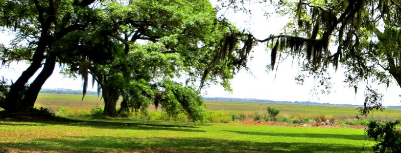 Lots and land for sale on St Simons Island